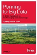 Free eBook: Planning for Big Data